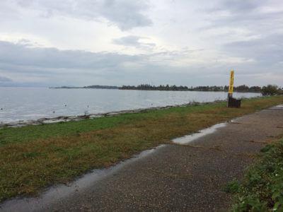 南湖東岸「志那」
